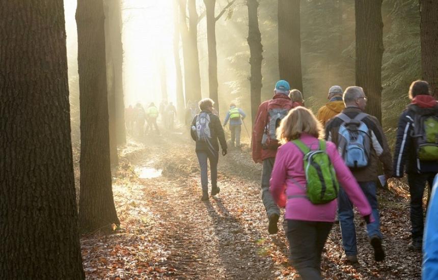 4 октомври - Световeн ден на ходенето
