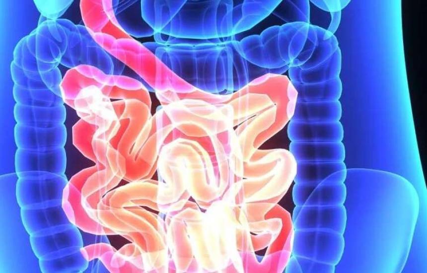 Какво трябва да знаем за рака на дебелото черво?