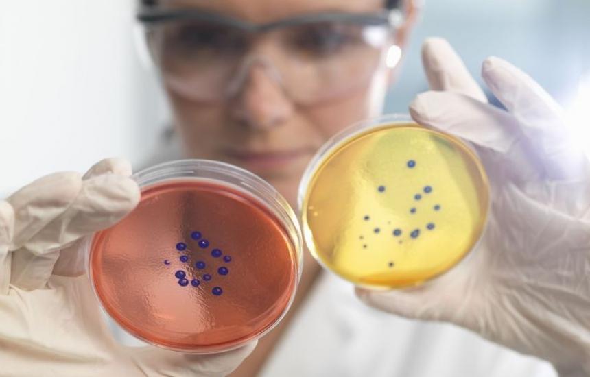 Топ учени на юбилея на микробиолозите от БАН