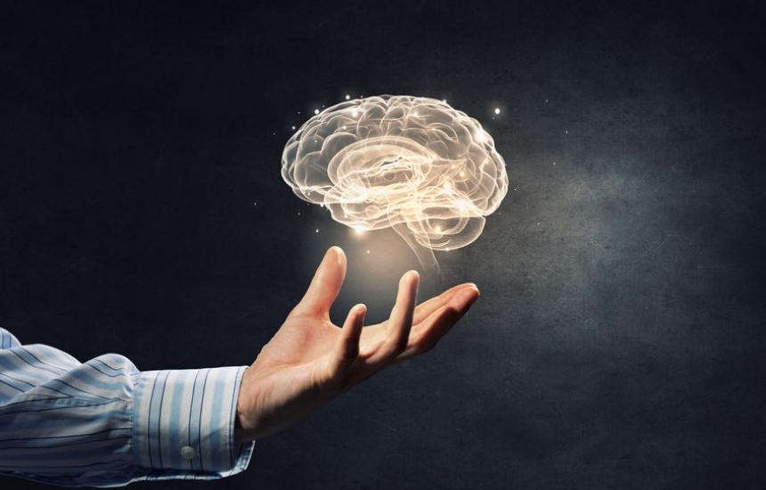 Топ учени на форум за стволовите клетки в мозъка