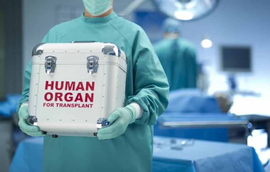 Испанци учат наши лекари на трансплантации