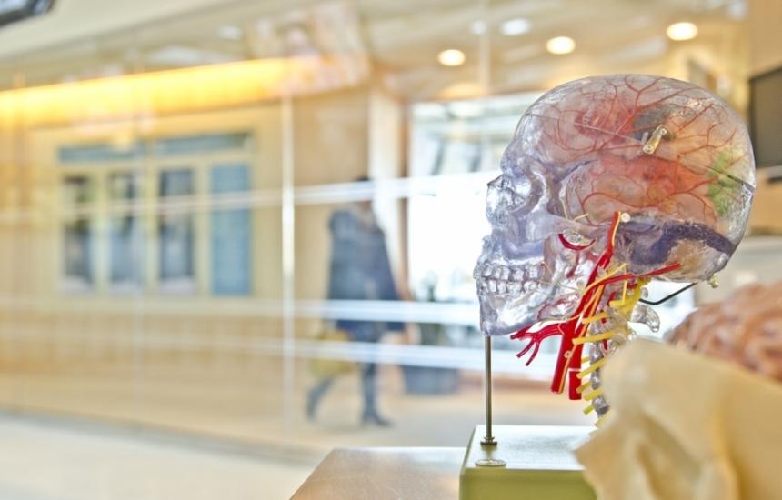 Българи откриха как възникват деменциите