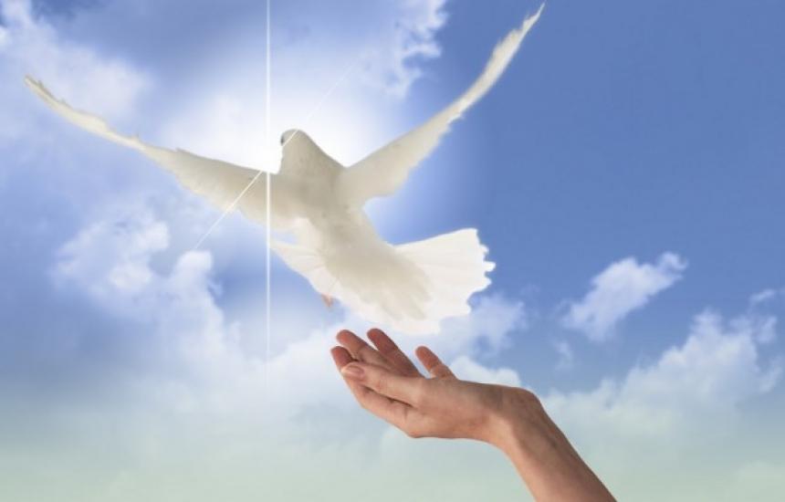 Без насилие в Световния ден на мира