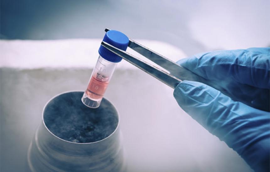 Фонд инвитро ще работи с онкоболни