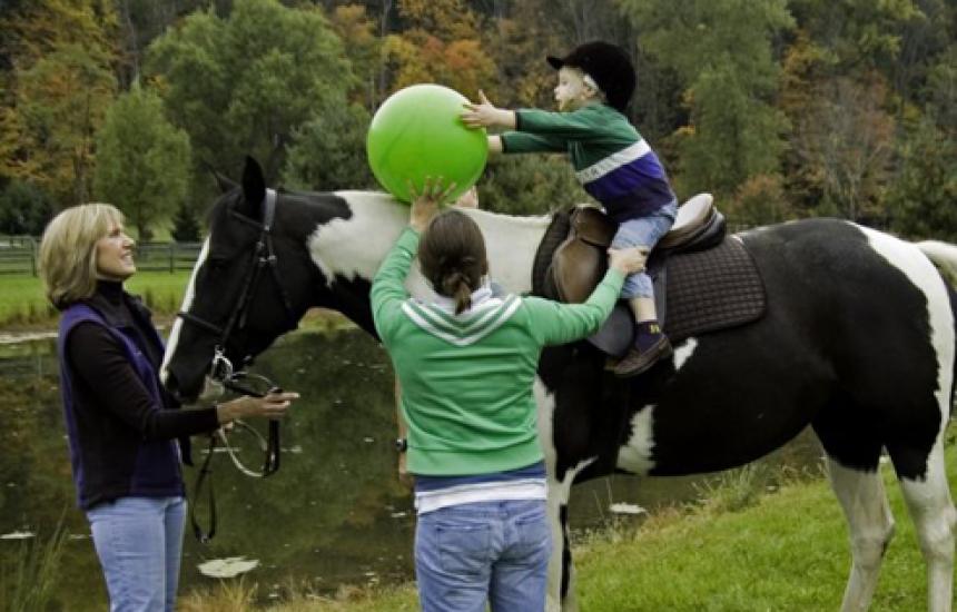 Силата на лечението с коне