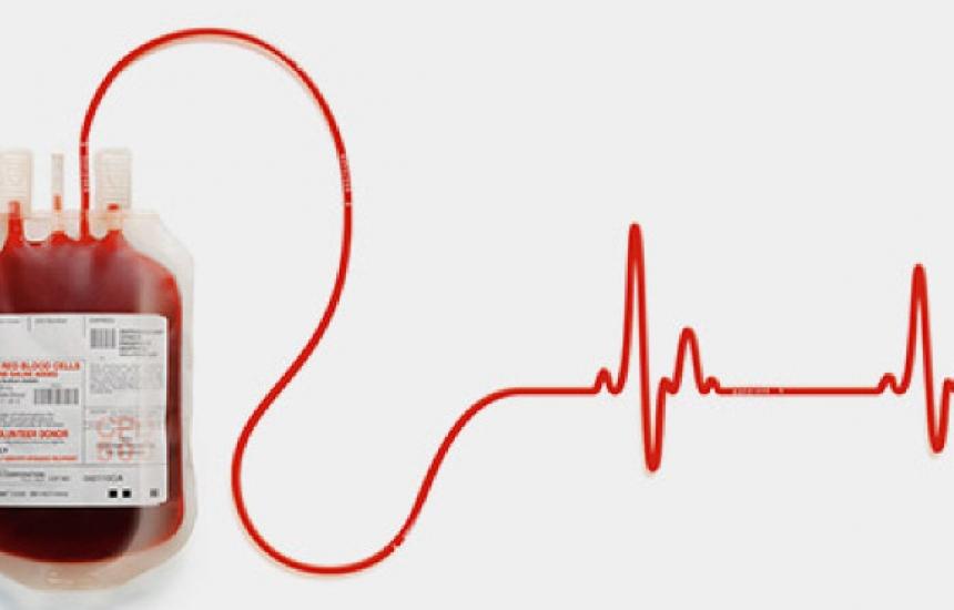 Колко струва човешката кръв