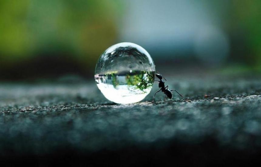 Водата е здраве за хората и за природата