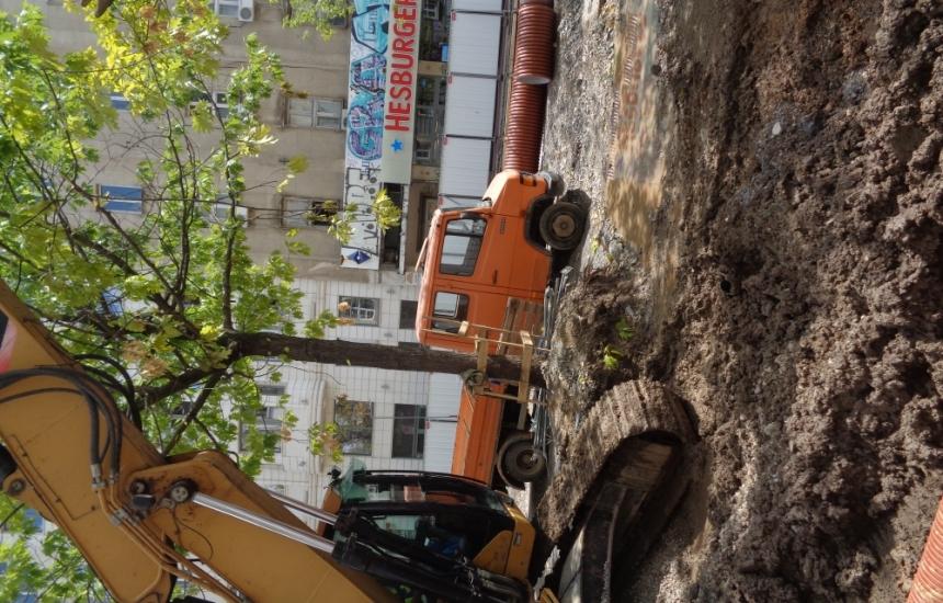 Спрете сечта на зеленина в София