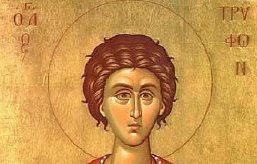 Почитаме Св. Трифон