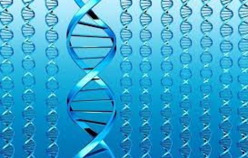 Български учени обсъждат тайните на генома