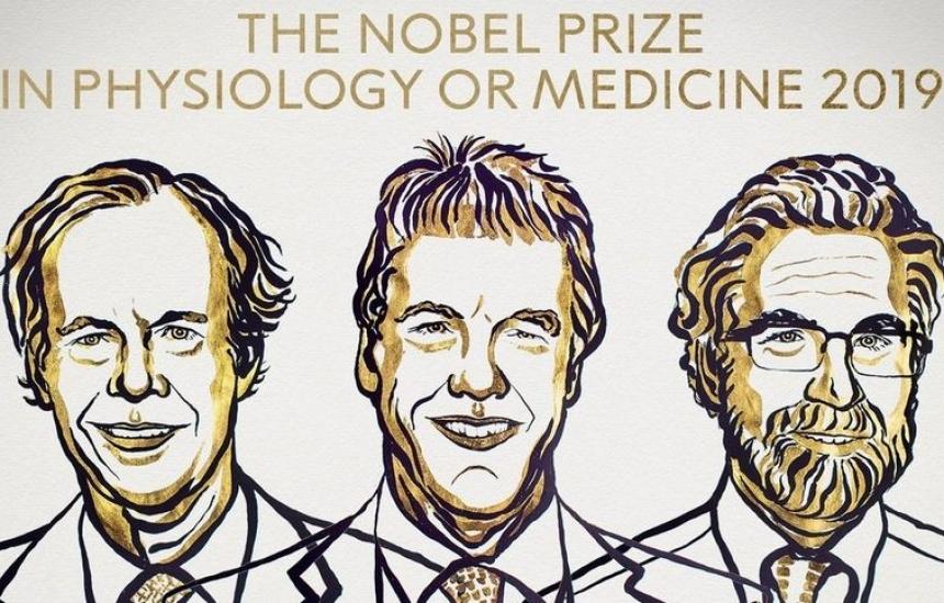 Нобел за учени, изследвали как клетките реагират на кислорода