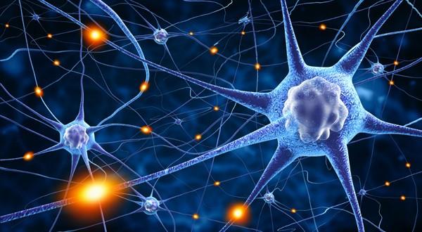 30 май - Световен ден на множествената склероза