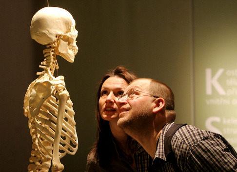 БАН с учебен музей за човешкото тяло