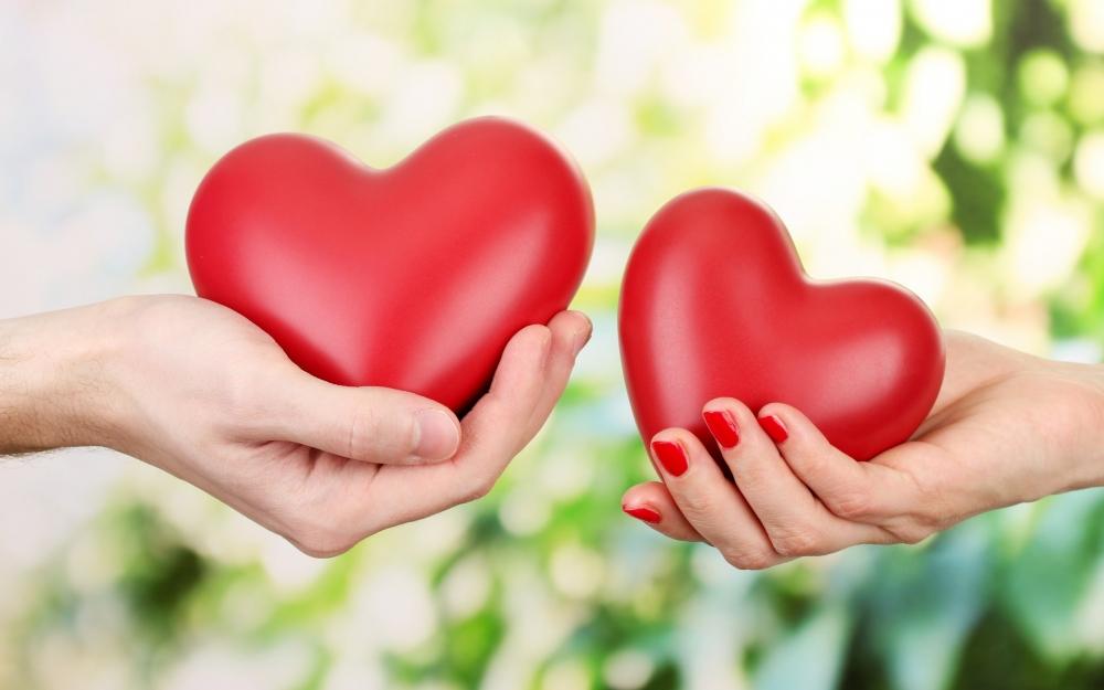 Кариерата изяжда любовта