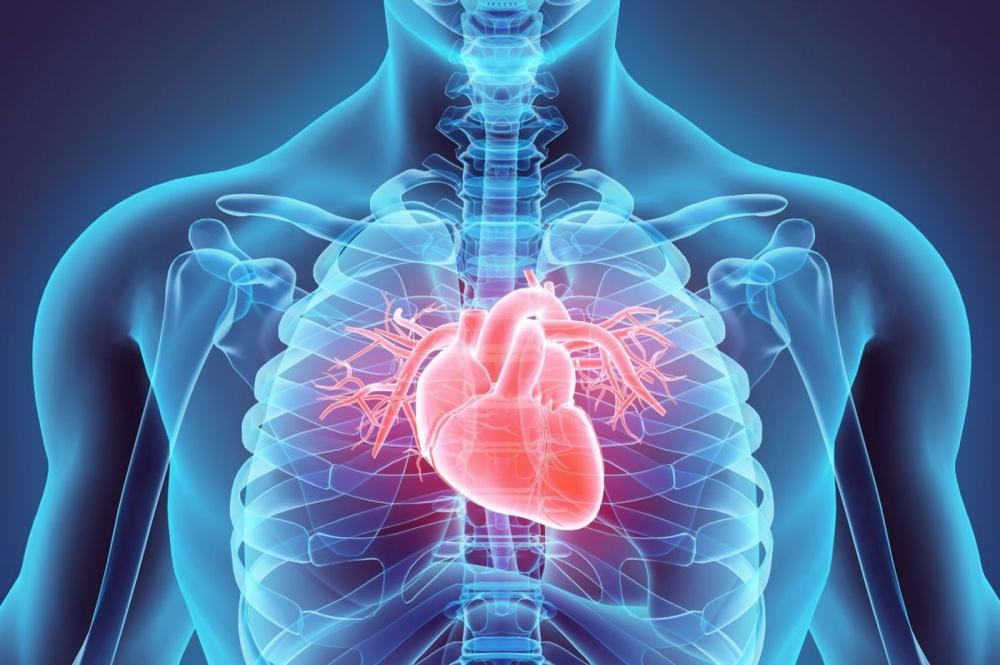 Инвазивната кардиология през 2019 г.