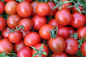 Спряха 24 тона зеленчуци с пестициди