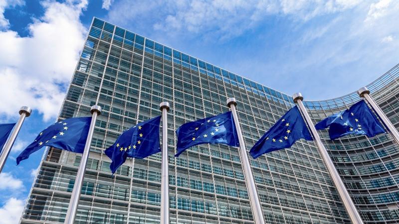 ЕС не планира обща карантина