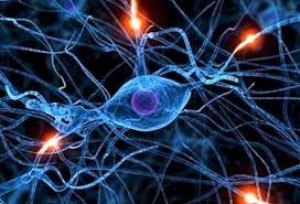 Половината от хората с епилепсия са деца