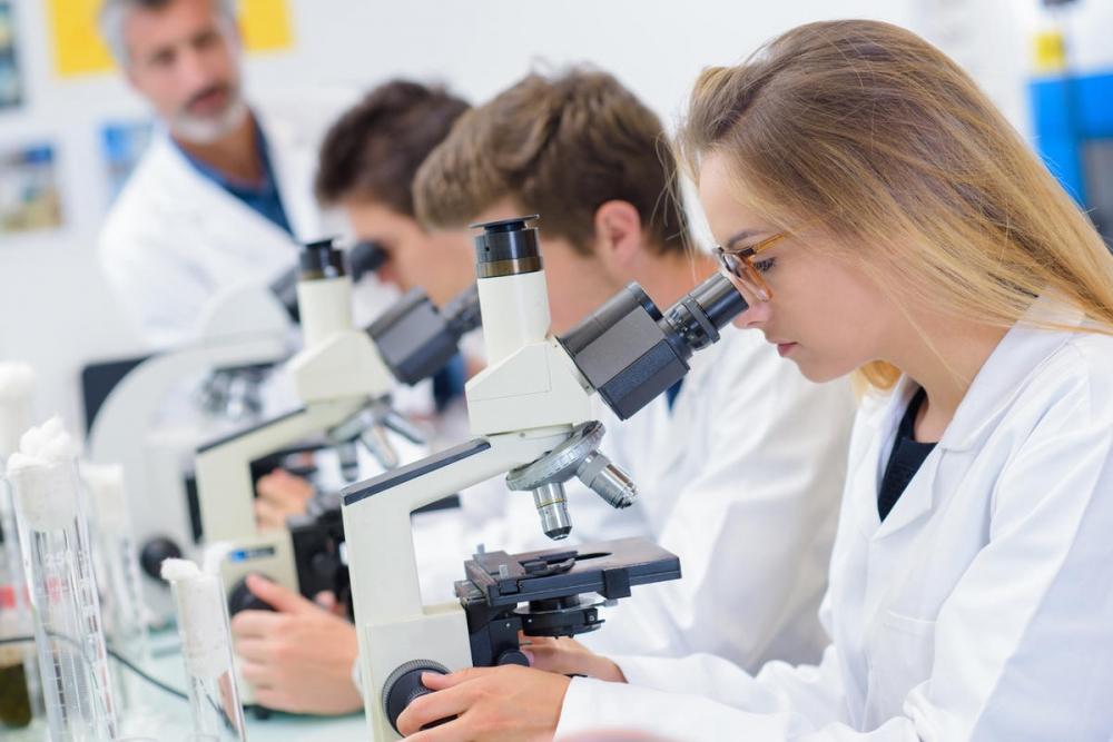 Медиците-първи по успех от гимназията