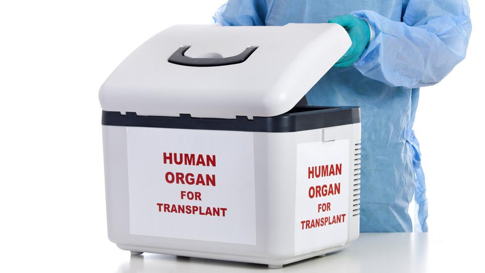 Разкриха канал за трафик на донори