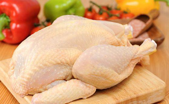Спряха 800 кг пилешко със салмонела