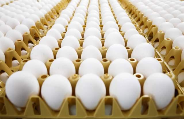 Масови проверки на яйца и агнешко за Великден