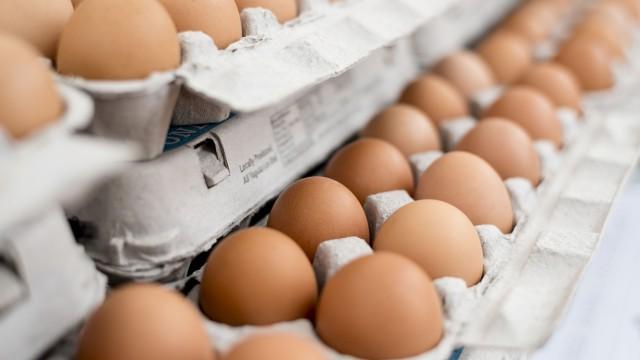 Хванаха яйца с фипронил и в България